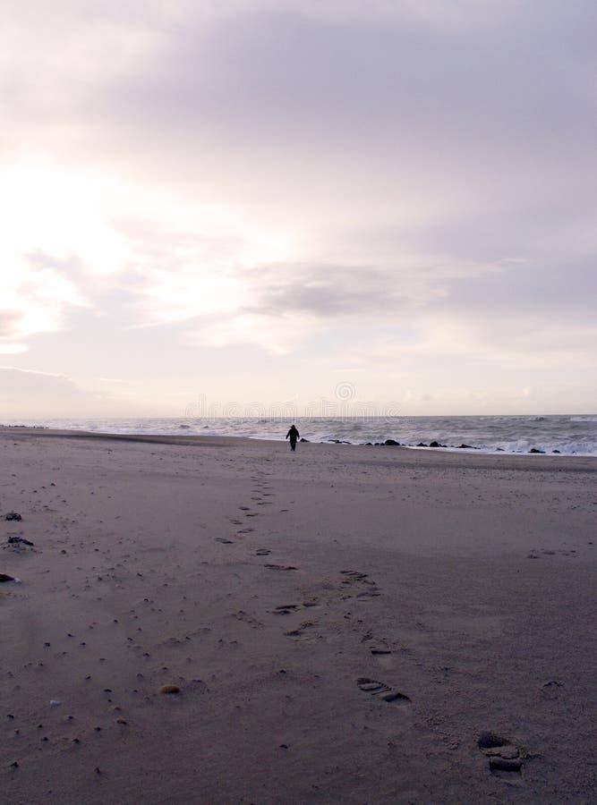 Download μόνη παραλία στοκ εικόνα. εικόνα από ακτή, ίχνος, alon, πόδι - 58379