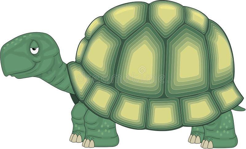 Μόνιμα κινούμενα σχέδια χελωνών απεικόνιση αποθεμάτων