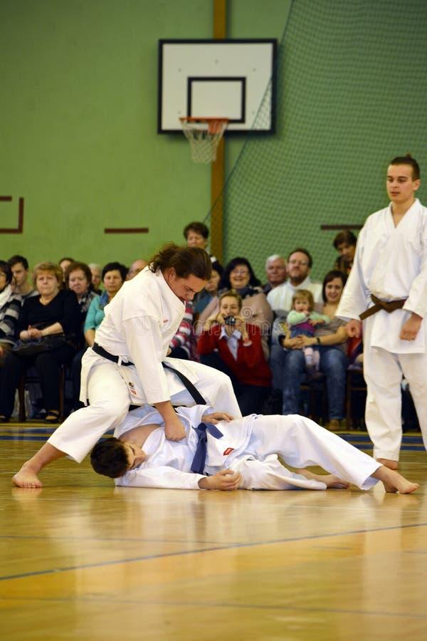 Μόνος - αμυντικό karate μάθημα στοκ εικόνα με δικαίωμα ελεύθερης χρήσης