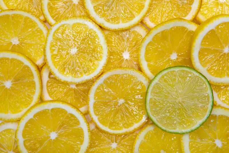 Μόνος ασβέστης ανάμεσα στα λεμόνια. στοκ εικόνες