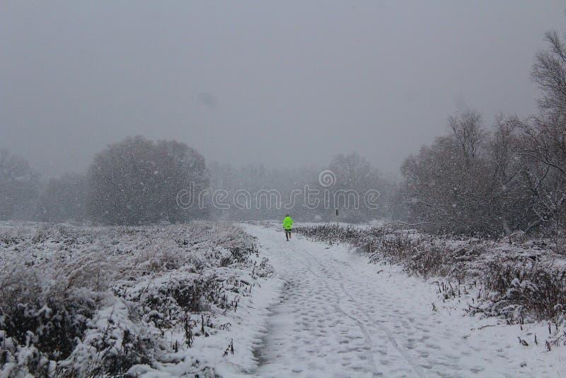 Μόνος δρομέας το χειμώνα, χειμερινή φύση στοκ εικόνα με δικαίωμα ελεύθερης χρήσης