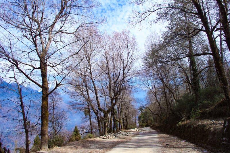 μόνος δρόμος στοκ φωτογραφία με δικαίωμα ελεύθερης χρήσης