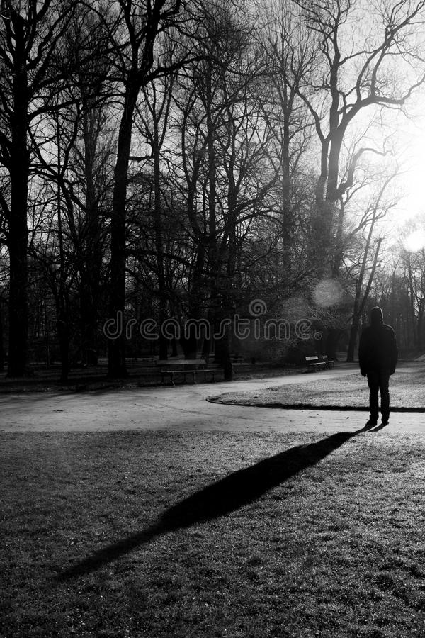 Μόνος περίπατος στο πάρκο Lazienki, Βαρσοβία, Πολωνία στοκ εικόνες