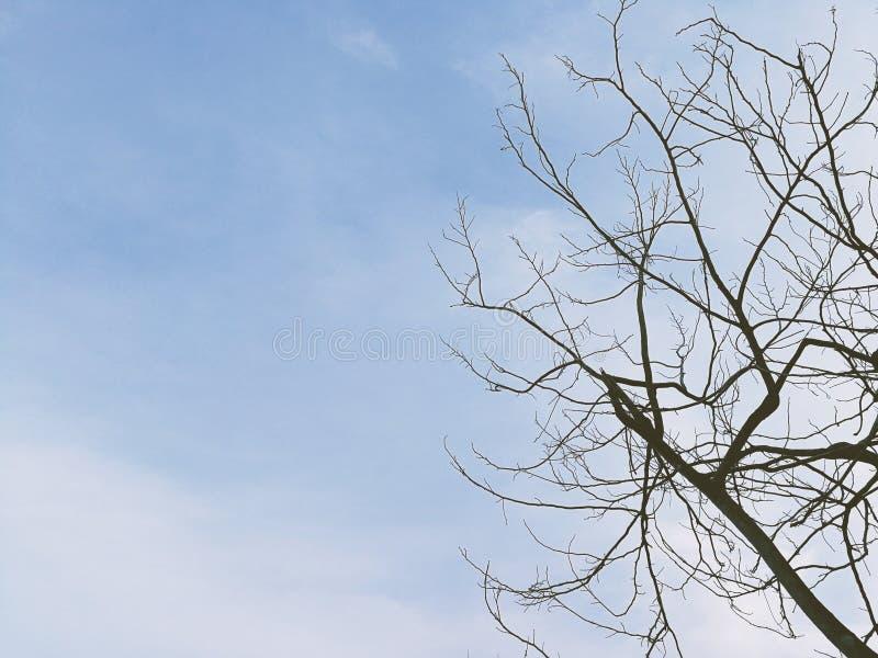 Μόνος χρόνος, μπλε ουρανού στοκ εικόνα με δικαίωμα ελεύθερης χρήσης