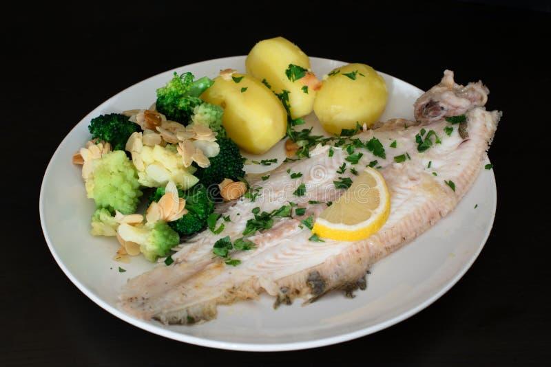 Μόνο γεύμα ψαριών του Ντόβερ στοκ φωτογραφίες
