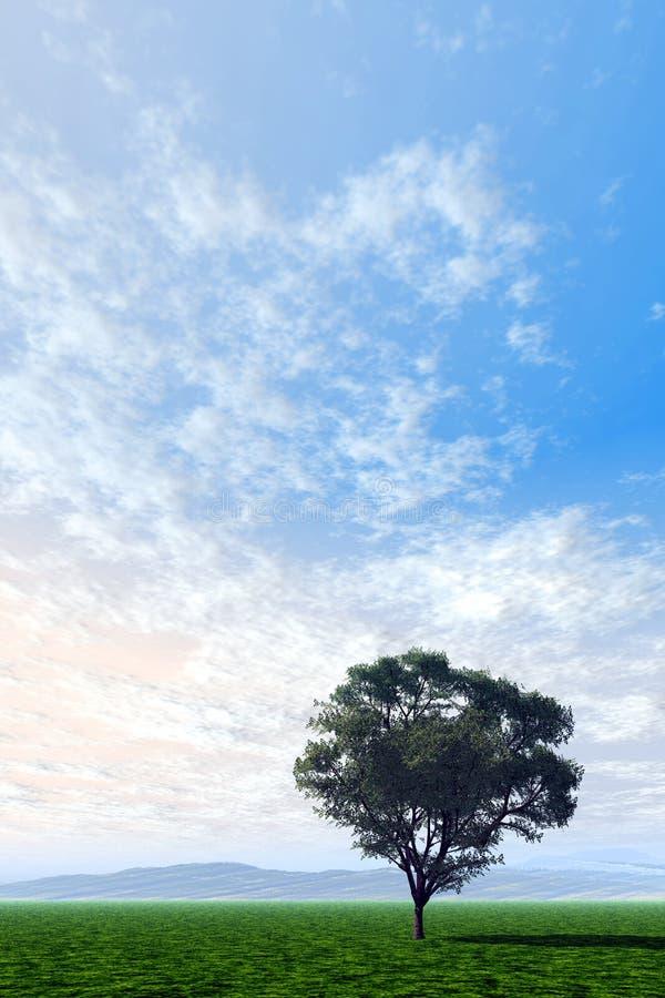 μόνο δέντρο ελεύθερη απεικόνιση δικαιώματος