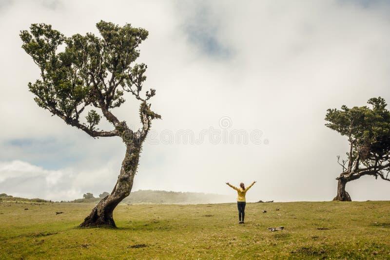 Μόνο εγώ και η φύση στοκ φωτογραφία
