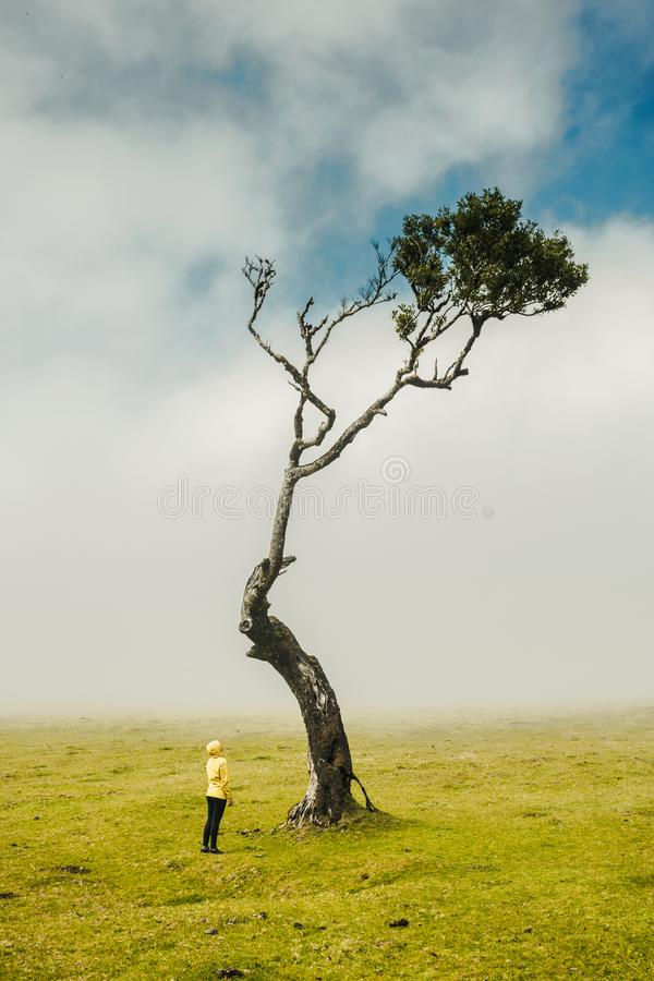 Μόνο εγώ και η φύση στοκ φωτογραφίες