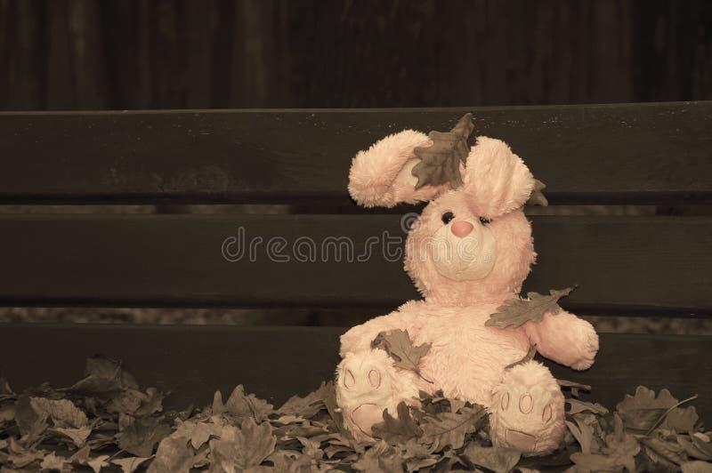 Μόνο ξεχασμένο εγκαταλειμμένο teddy κουνέλι λαγουδάκι παιχνιδιών που κάθεται σε έναν ξύλινο πάγκο που καλύπτεται με τα φύλλα φθιν στοκ εικόνα με δικαίωμα ελεύθερης χρήσης