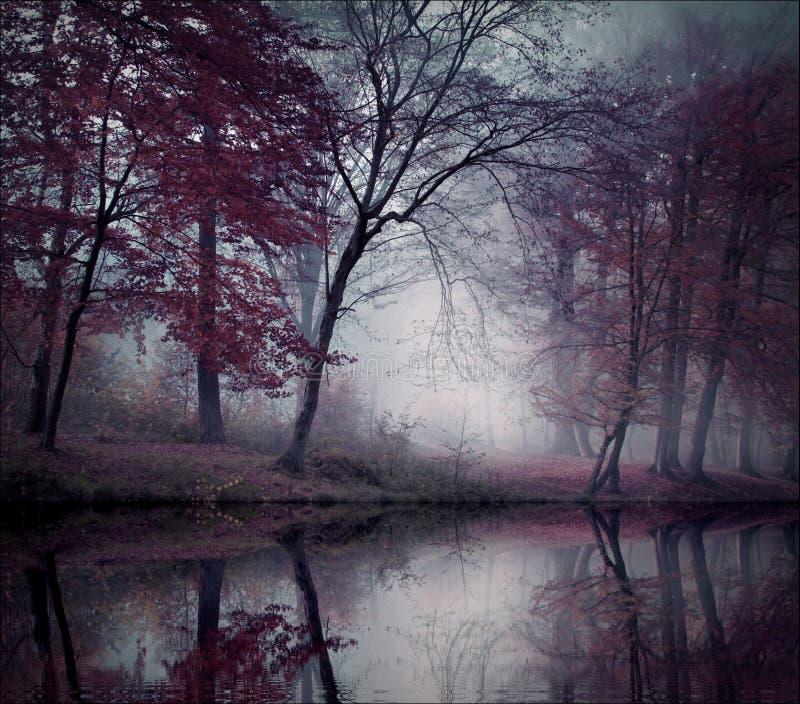 Μόνο σιωπή στοκ φωτογραφίες με δικαίωμα ελεύθερης χρήσης