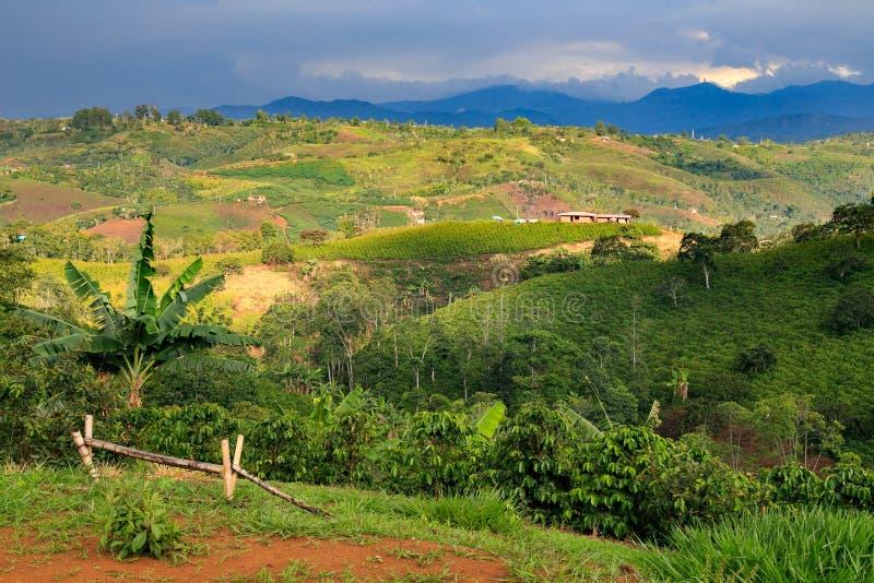 Μόνο σπίτι στα πράσινα βουνά στοκ φωτογραφία