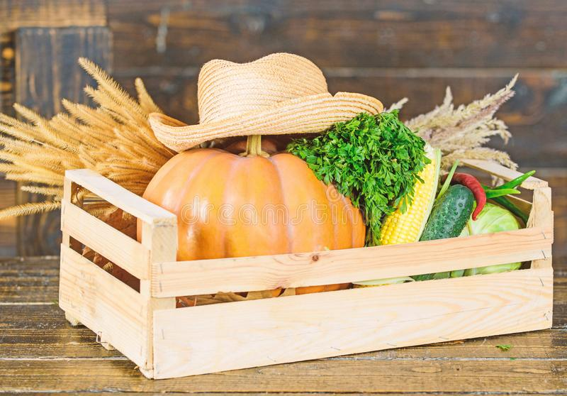 Μόνο τα καλύτερα φρούτα και λαχανικά οργανικά φυσικά τρόφιμα αποκριές αγορές στην αγορά healthy product r στοκ φωτογραφία