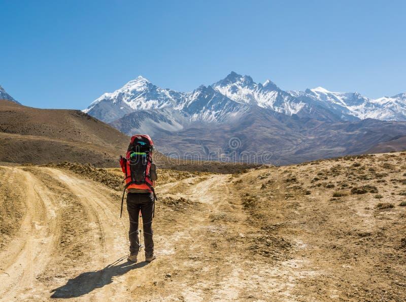 Μόνο trekker σε ένα σταυροδρόμι δύο δρόμων προς τα βουνά στοκ εικόνες