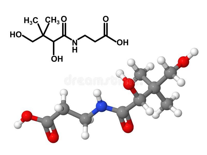 Μόριο βιταμινών B5 με το χημικό τύπο ελεύθερη απεικόνιση δικαιώματος