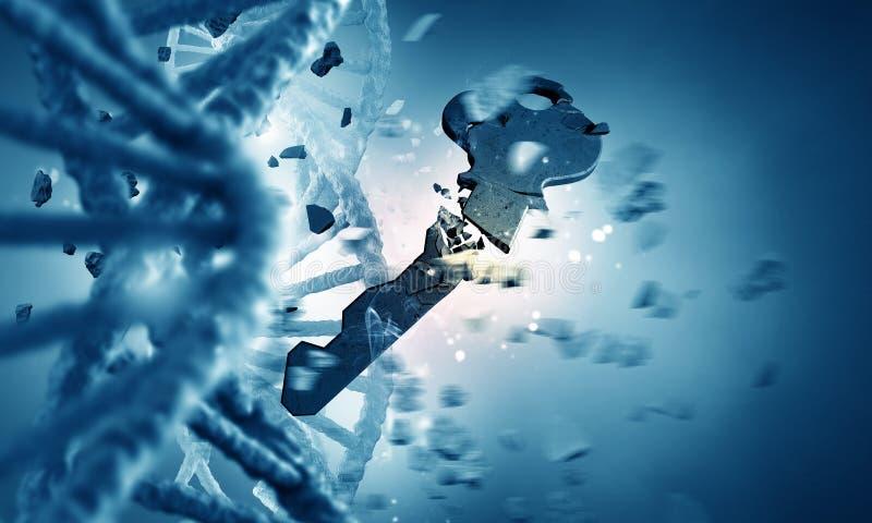 Μόριο και κλειδί DNA στοκ εικόνα με δικαίωμα ελεύθερης χρήσης