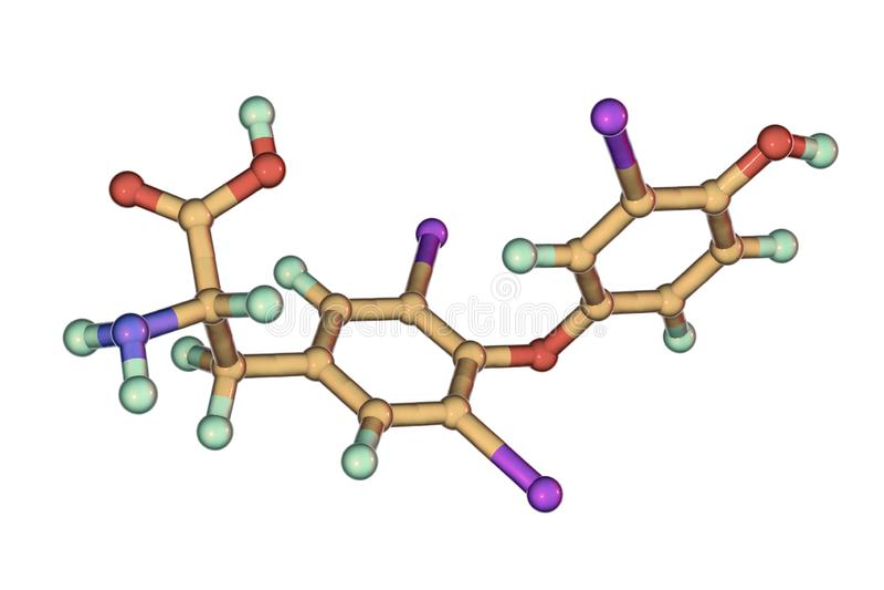 Μόριο του triiodothyronine, μια ορμόνη θυροειδή ελεύθερη απεικόνιση δικαιώματος