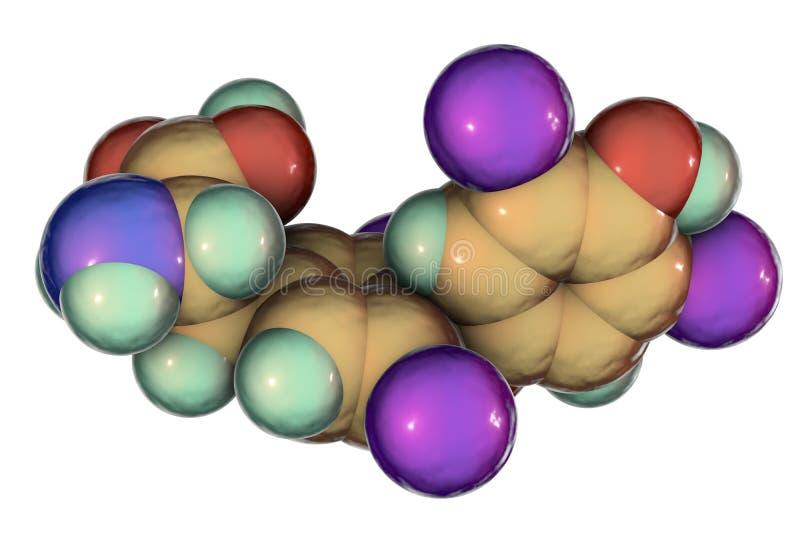 Μόριο thyroxine, μια ορμόνη θυροειδή διανυσματική απεικόνιση