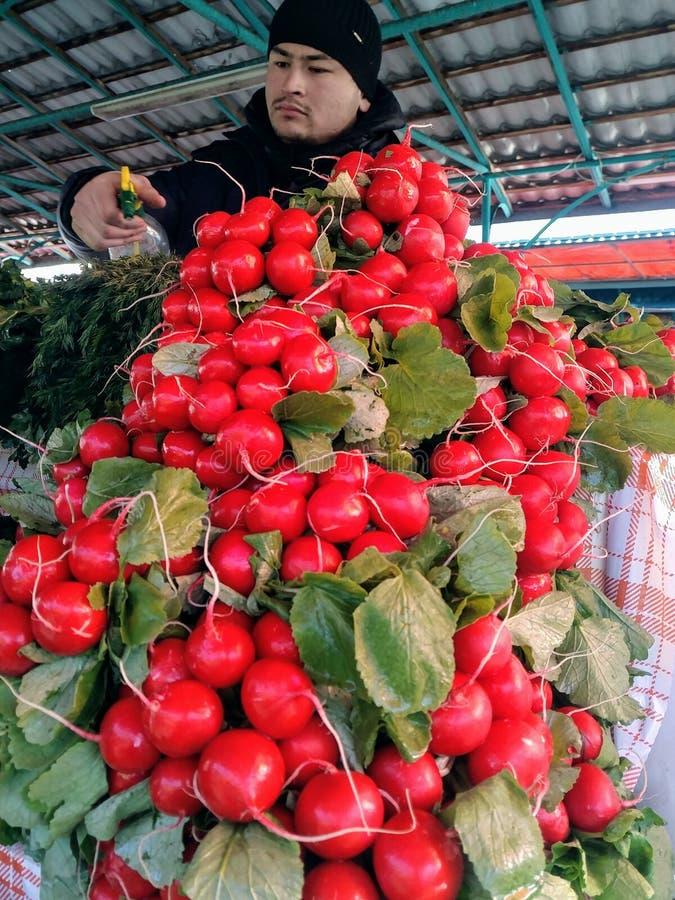 Μόσχα, RF 26 Μαρτίου 2019: φρέσκα κόκκινα ραδίκια στο μετρητή αγοράς ο πωλητής ποτίζει τα πράσινα από τον ψεκασμό στοκ εικόνες