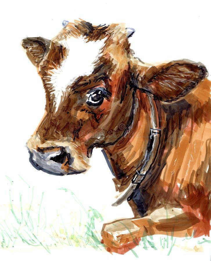 Μόσχος αγελάδων καφετής, απεικόνιση αποθεμάτων