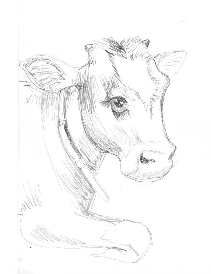 Μόσχος αγελάδων καφετής, διανυσματική απεικόνιση