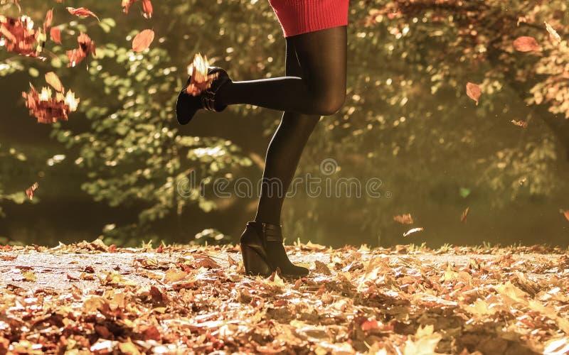 Μόδα φθινοπώρου Θηλυκά πόδια στο μαύρο pantyhose υπαίθριο στοκ φωτογραφίες με δικαίωμα ελεύθερης χρήσης