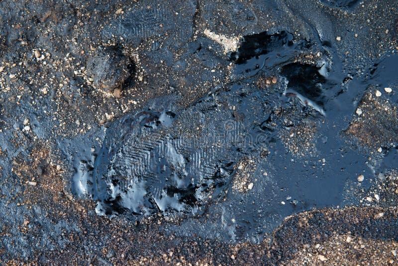 Μόλυνση αργού πετρελαίου στοκ φωτογραφίες