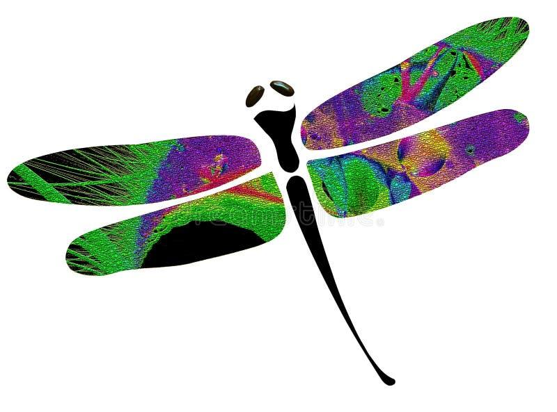 μύγα δράκων ελεύθερη απεικόνιση δικαιώματος