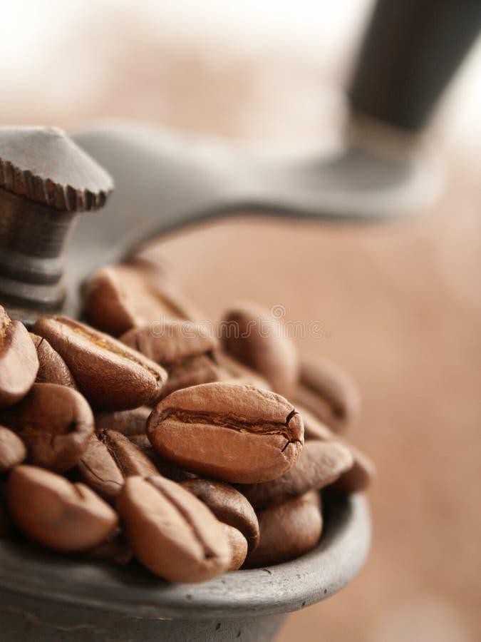Μύλος καφέ στοκ φωτογραφία