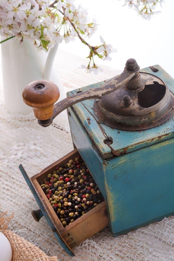 Μύλος πιπεριών στοκ εικόνες με δικαίωμα ελεύθερης χρήσης
