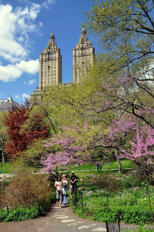 νέα άνοιξη Υόρκη πάρκων κεντρ στοκ εικόνες