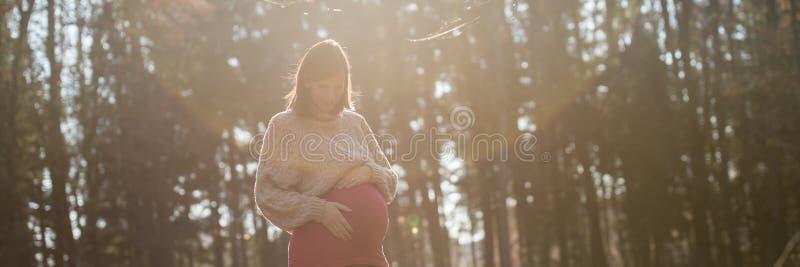 Νέα έγκυος γυναίκα στο τελευταίο τρίμηνο στοργικά σχετικά με τα μπελ της στοκ εικόνες