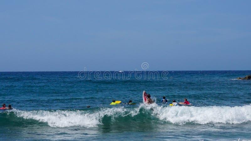 Νέα αγόρια που κάνουν σερφ τα κύματα μιας καραϊβικής παραλίας μια όμορφη ηλιόλουστη ημέρα στοκ εικόνα με δικαίωμα ελεύθερης χρήσης