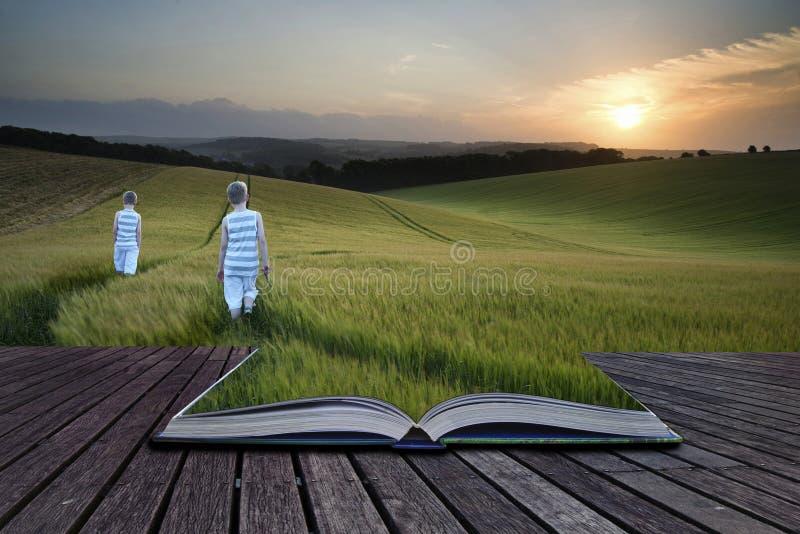 Νέα αγόρια τοπίων έννοιας έννοιας βιβλίων που περπατούν μέσω του τομέα στοκ φωτογραφίες