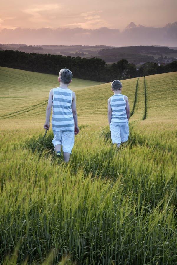 Νέα αγόρια τοπίων έννοιας που περπατούν μέσω του τομέα στο ηλιοβασίλεμα μέσα στοκ εικόνες