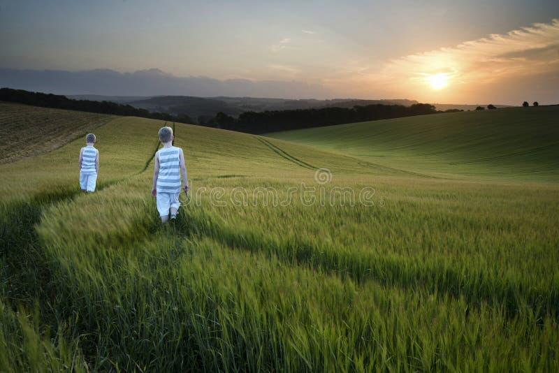 Νέα αγόρια τοπίων έννοιας που περπατούν μέσω του τομέα στο ηλιοβασίλεμα μέσα στοκ φωτογραφίες με δικαίωμα ελεύθερης χρήσης