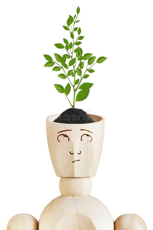 Νέα ανάπτυξη εγκαταστάσεων από το ανθρώπινο κεφάλι Περιβαλλοντικό μυαλό στοκ φωτογραφία