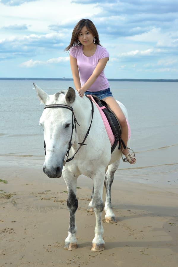 Νέα αρκετά ασιατική γυναίκα που οδηγά το άσπρο άλογο στοκ φωτογραφίες με δικαίωμα ελεύθερης χρήσης