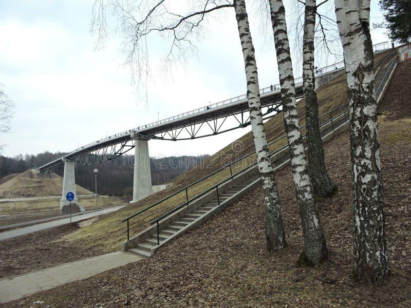 Νέα γέφυρα για πεζούς, Λιθουανία στοκ εικόνα με δικαίωμα ελεύθερης χρήσης