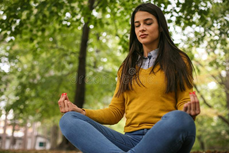 Νέα γιόγκα άσκησης γυναικών στη φύση στοκ εικόνες