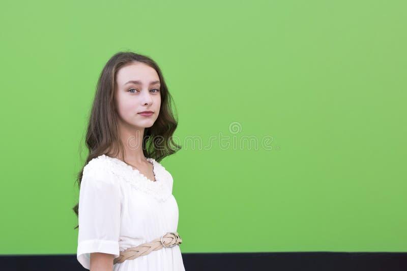 Νέα γοητευτική γυναίκα στον πράσινο τοίχο στοκ εικόνες με δικαίωμα ελεύθερης χρήσης