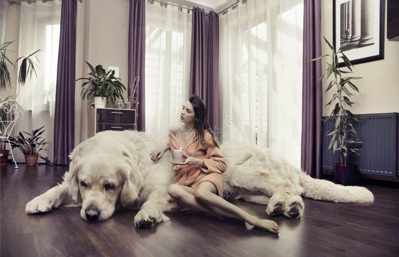 Νέα γυναίκα που αγκαλιάζει το μεγάλο σκυλί στοκ εικόνες
