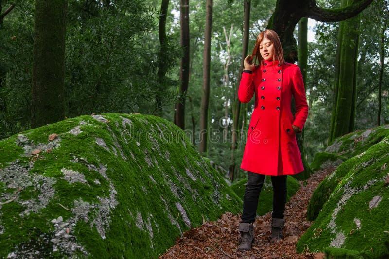 Νέα γυναίκα που αισθάνεται το λυπημένο περπάτημα μόνο στη δασική πορεία που φορά το κόκκινο μακρύ παλτό στοκ εικόνα με δικαίωμα ελεύθερης χρήσης