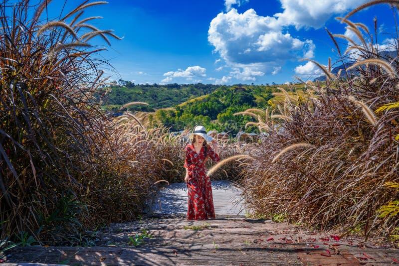 Νέα γυναίκα που περπατά στην ξύλινη πορεία στοκ εικόνες