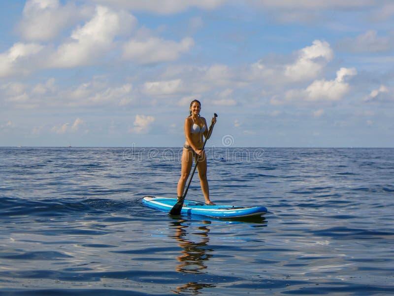 Νέα γυναίκα που στέκεται στο paddleboard στην επιφάνεια θάλασσας Αθλητικής δραστηριότητας Στάση επάνω στο κουπί Κορίτσι που απολα στοκ φωτογραφίες