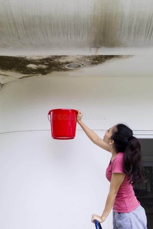 Νέα γυναίκα που συλλέγει τα όμβρια ύδατα με έναν κάδο στοκ φωτογραφίες