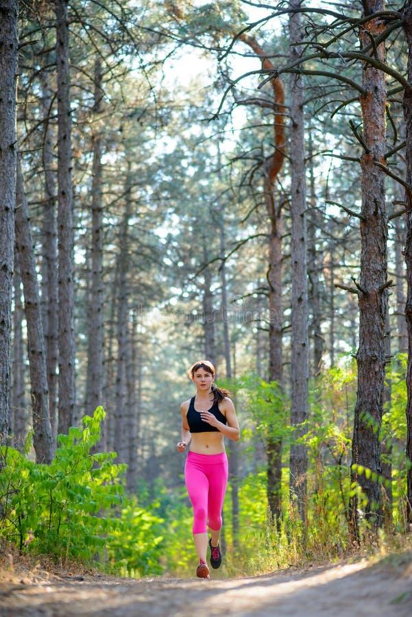 Νέα γυναίκα που τρέχει στο ίχνος στην όμορφη άγρια έννοια τρόπου ζωής πεύκων δασική ενεργό Διάστημα για το κείμενο στοκ φωτογραφία