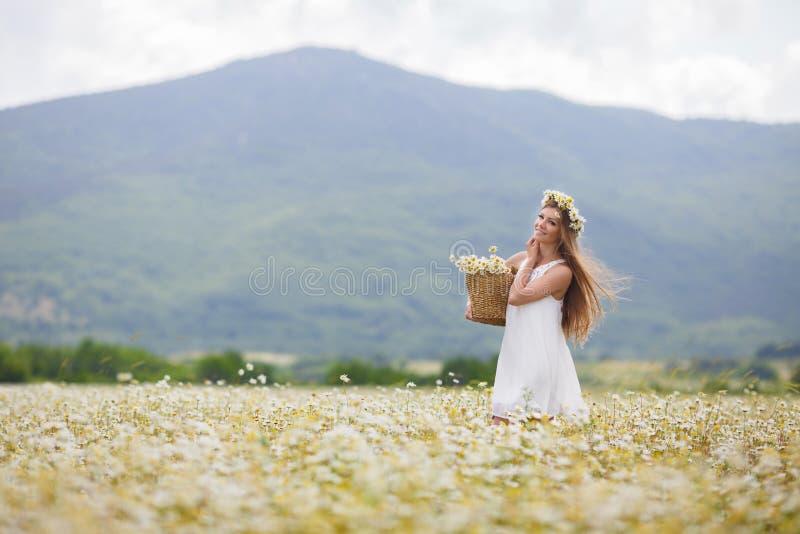 Νέα γυναίκα σε έναν τομέα των ανθίζοντας μαργαριτών στοκ φωτογραφία