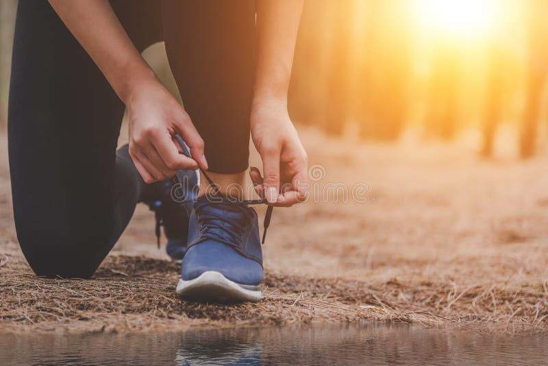 Νέα δένοντας κορδόνια γυναικών ικανότητας τρέχοντας υπαίθρια στα fores στοκ εικόνες