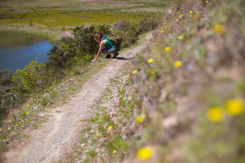 Νέα ενήλικη γυναίκα που εξερευνά τη διαδρομή πεζοπορίας στοκ εικόνα με δικαίωμα ελεύθερης χρήσης
