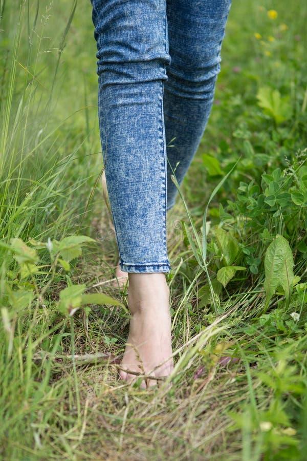 Νέα θηλυκά πόδια που περπατούν στη χλόη το καλοκαίρι στοκ φωτογραφία με δικαίωμα ελεύθερης χρήσης